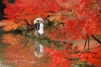 Tour Hà Nội – Nhật Bản 5 Ngày 4 đêm: Lãng Mạn Mùa Lá đỏ